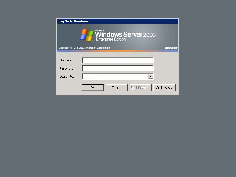 Windows 2003 gray background